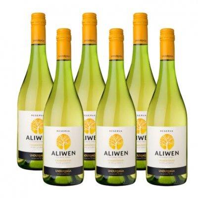 Aliwen 6x Chardonnay Reserva
