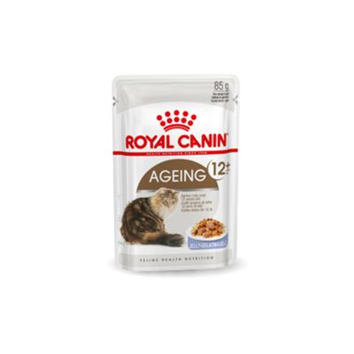 Royal Canin Ageing 12+ In Gravy 12 X 85 G