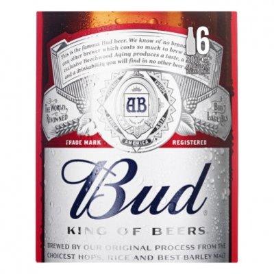 Bud 6-pack fles